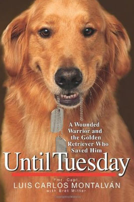 2015: Until Tuesday